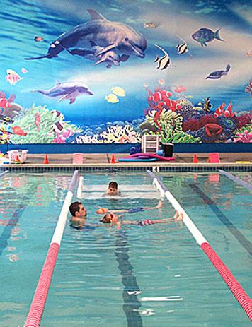 American Swim Academy Dublin Swim School And Swimming